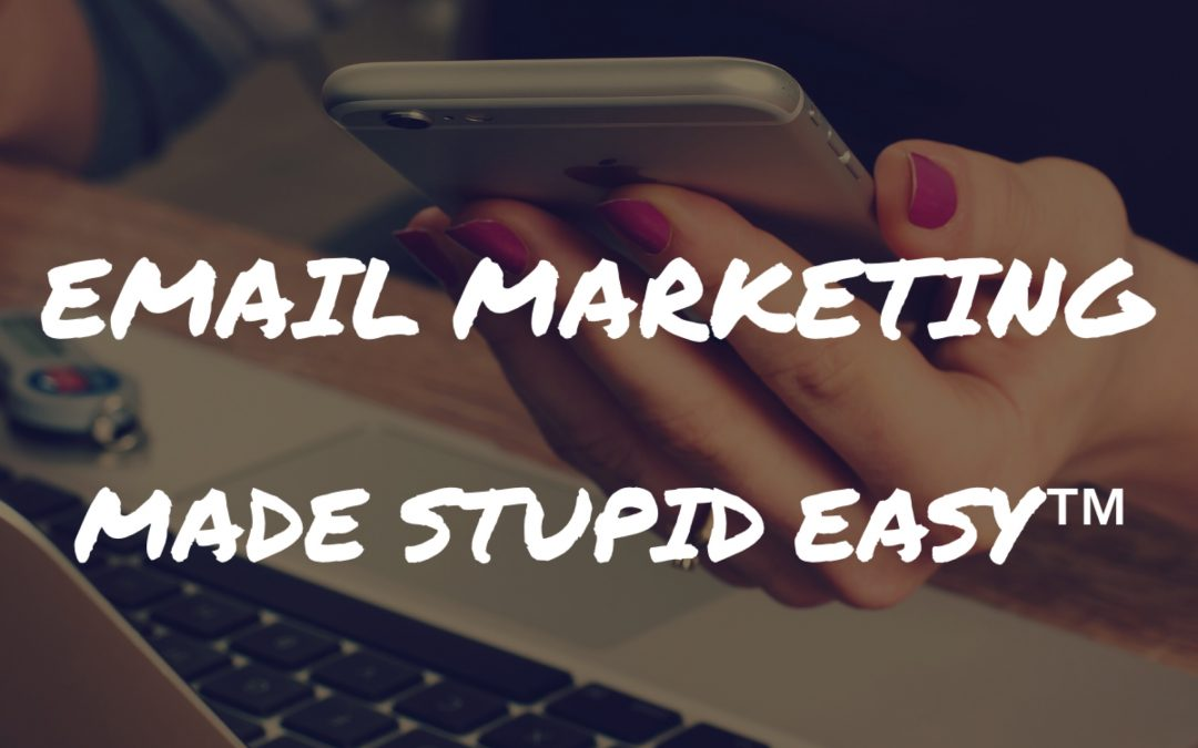 Email Marketing Made Stupid Easy®: Turning Subscribers Into Buyers Without Bugging Them